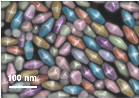 A false colored SEM image of gold nanoparticles in a bipyramidal shape.