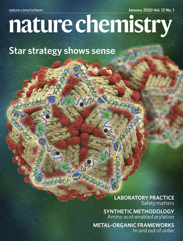 Image of the cover of Nature Research, showing an image depicting an artistic representation of star-shaped DNA nanostructures binding to the surface of dengue virus particles