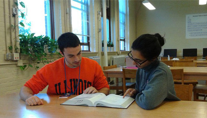 Male and female students studying in a library
