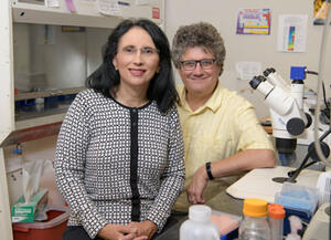 Sandra L. Rodriguez-Zas and Jonathan V. Sweedler in a laboratory